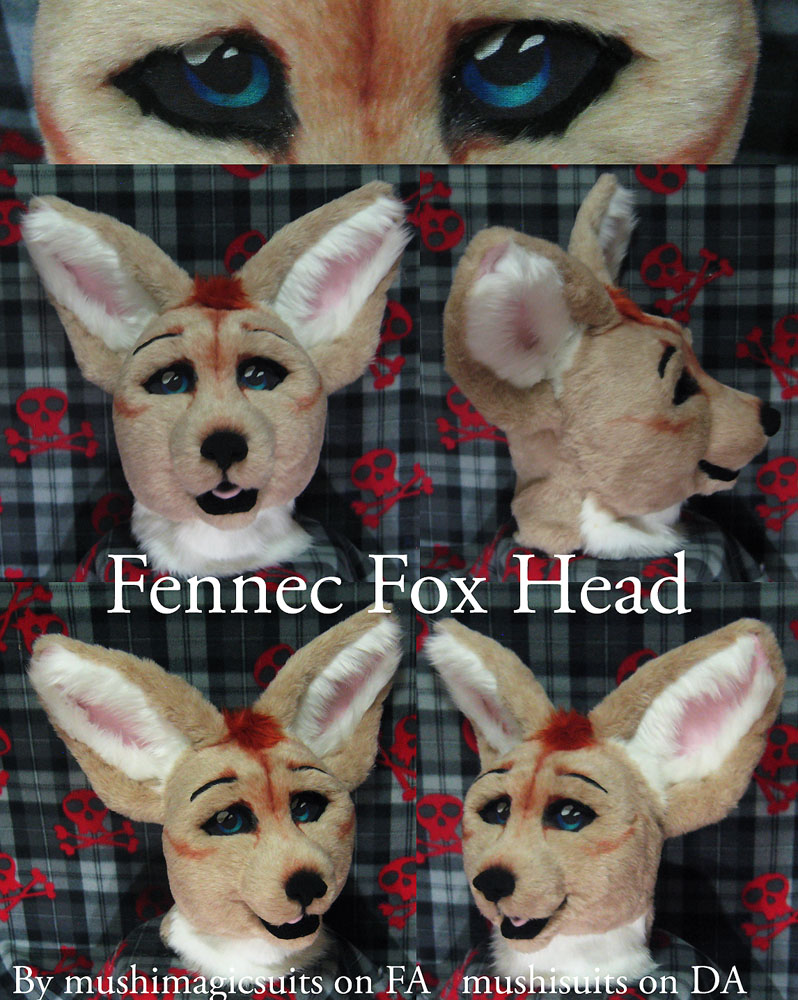 Fennec fox head
