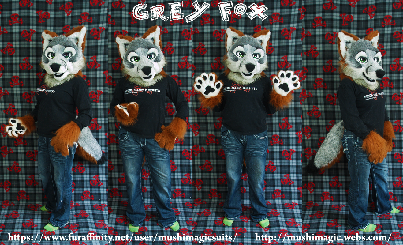 Grey fox Partial 2014