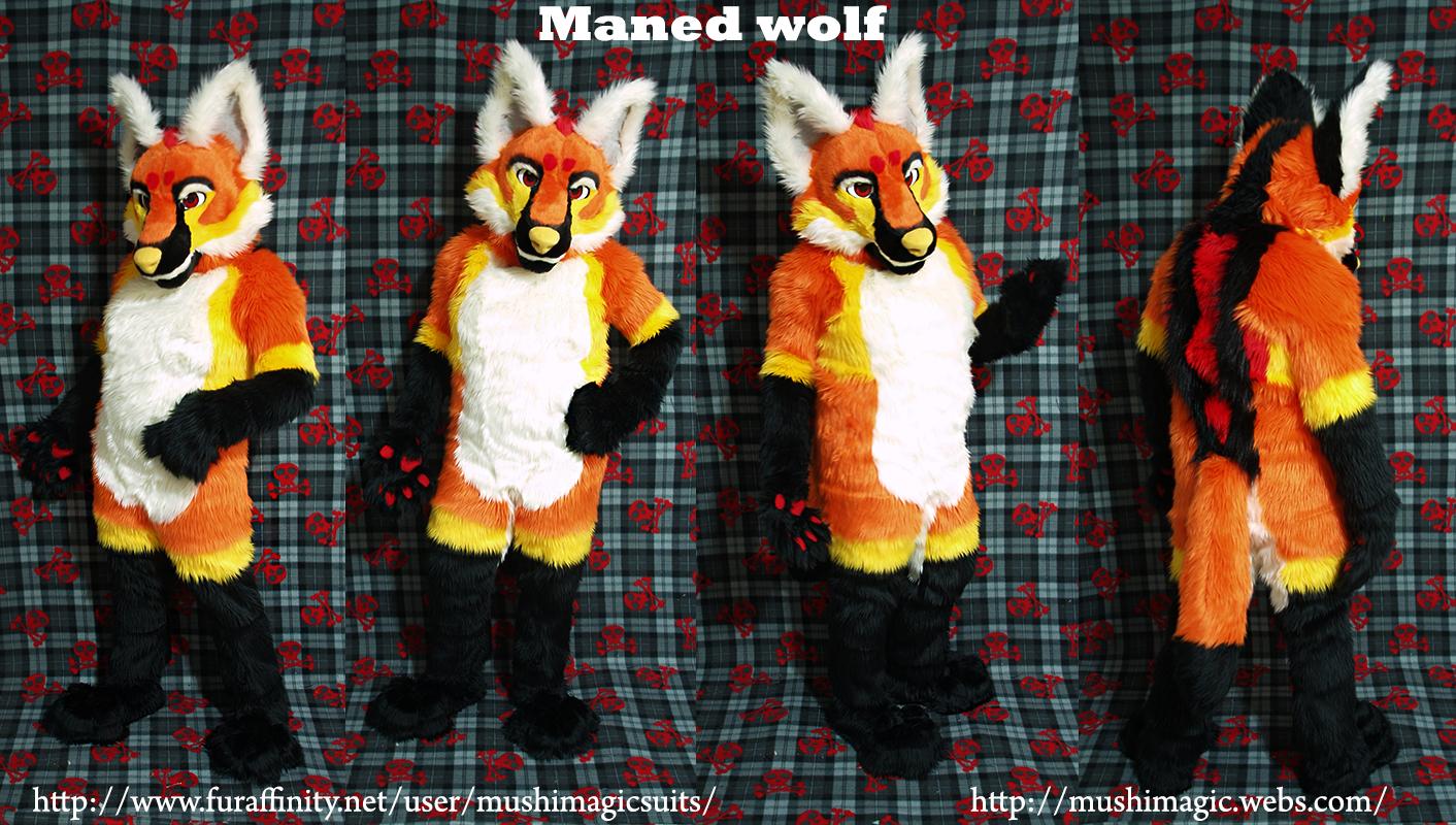 Maned Wolf: 2013