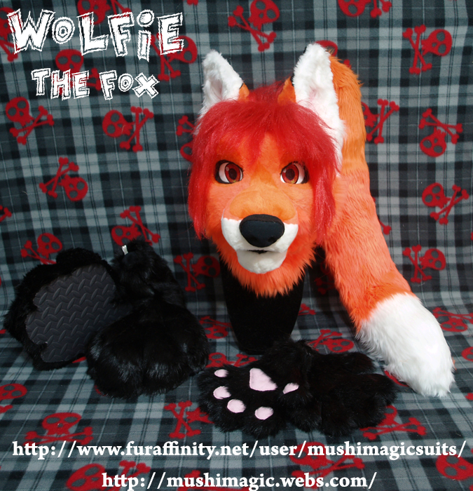 Wolfie The Fox 2013